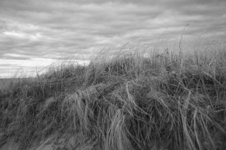 Dunes at Rexhame, Marshfield, MA